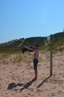 bear dunes tshirt trocknen