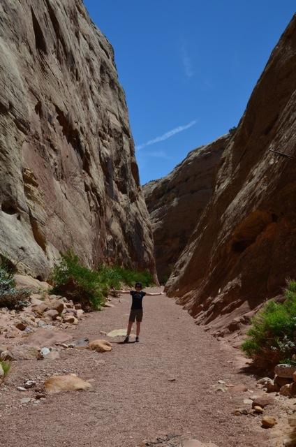 Capitol George Trail 1